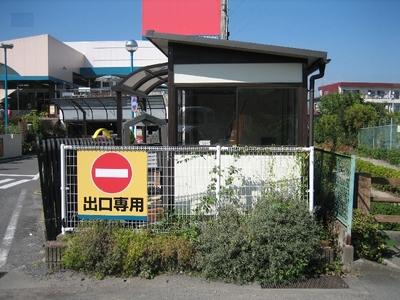 tomizu 3 800x600.jpg